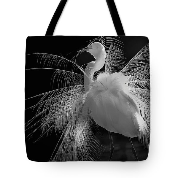 Great White Egret Portrait - Displaying Plumage  Tote Bag