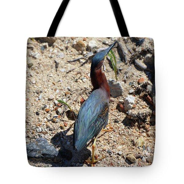 Green Heron Strut Tote Bag