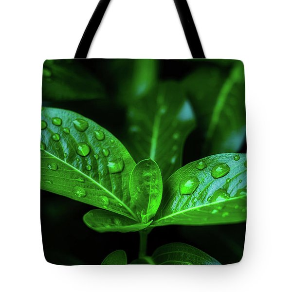 Green Leaf With Water Tote Bag