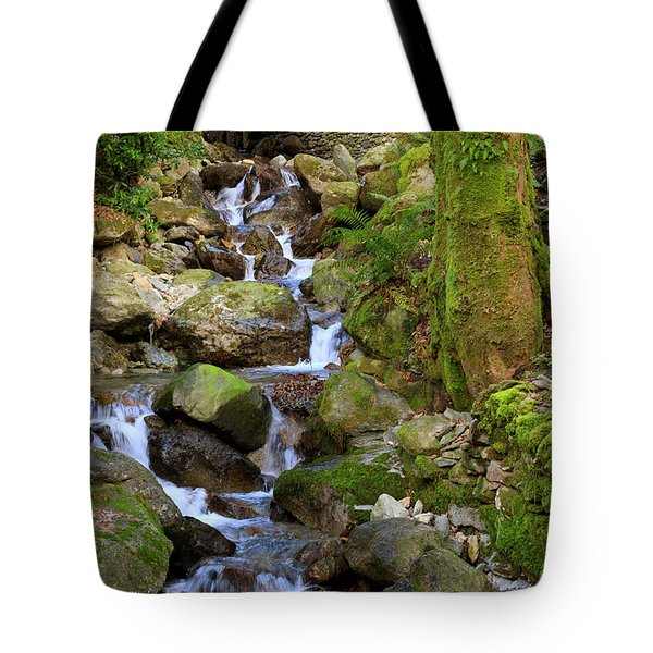 Greenhead Gill Above Grasmere In Lake District National Park Tote Bag