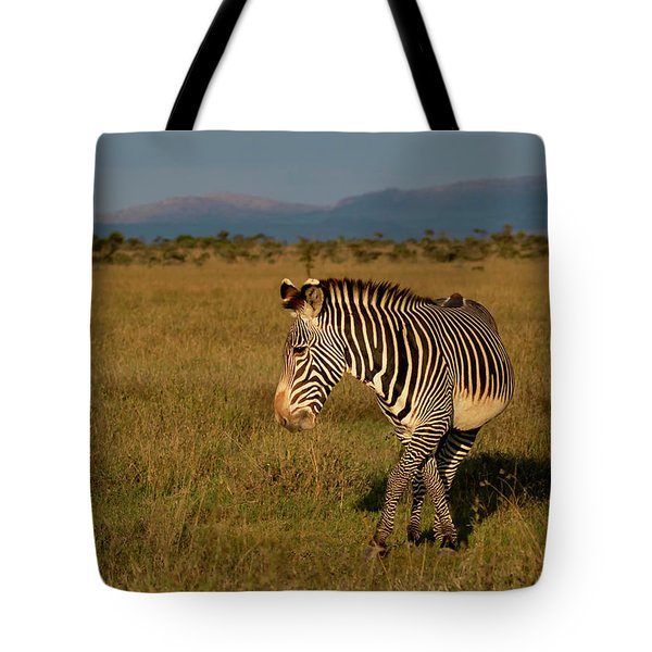 Tote Bag featuring the photograph Grevy's Zebra by Thomas Kallmeyer