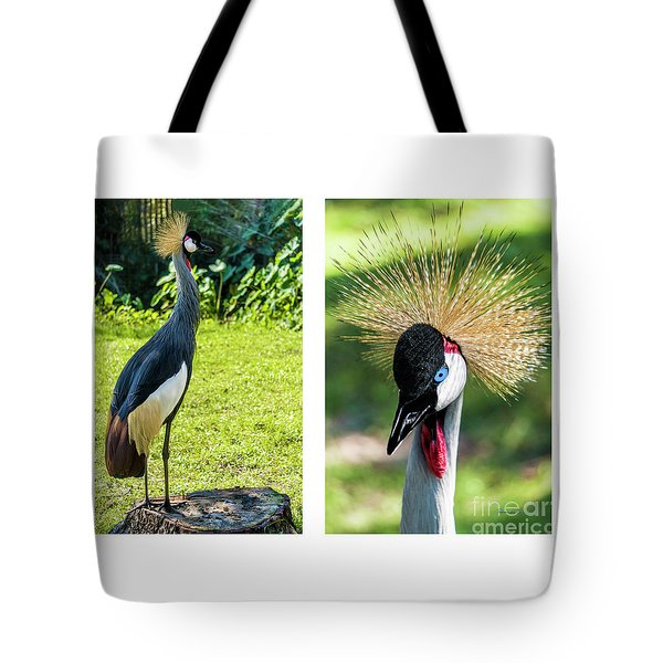 Grey Crowned Crane Gulf Shores Al Collage 8 Diptych Tote Bag