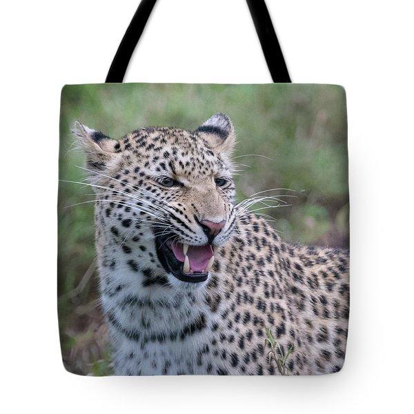 Grimacing Leopard Tote Bag