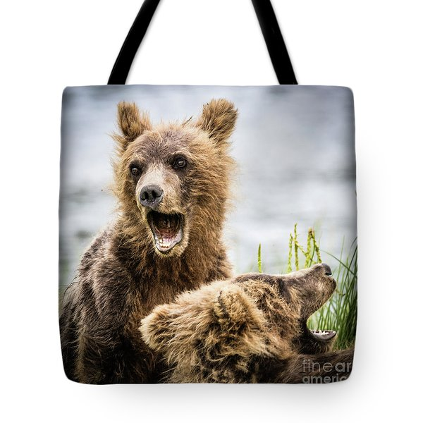 Grizzly Cubs Looking For Their Mum Tote Bag
