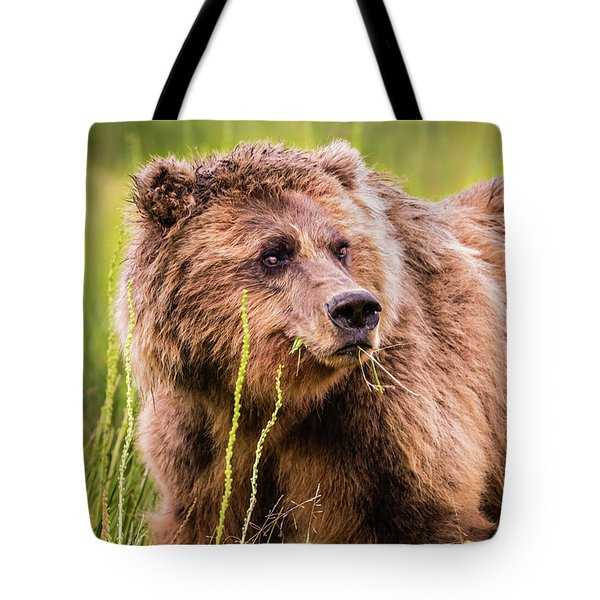 Grizzly In Lake Clark National Park, Alaska Tote Bag