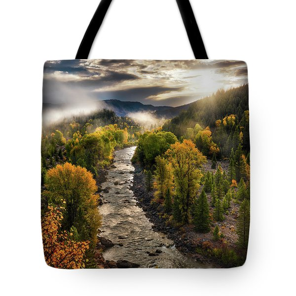 Tote Bag featuring the photograph Gros Ventre River Light by Leland D Howard
