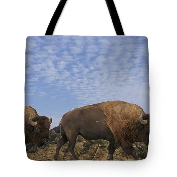 Group Of Bison Walking Against Rocky Mountains  Tote Bag