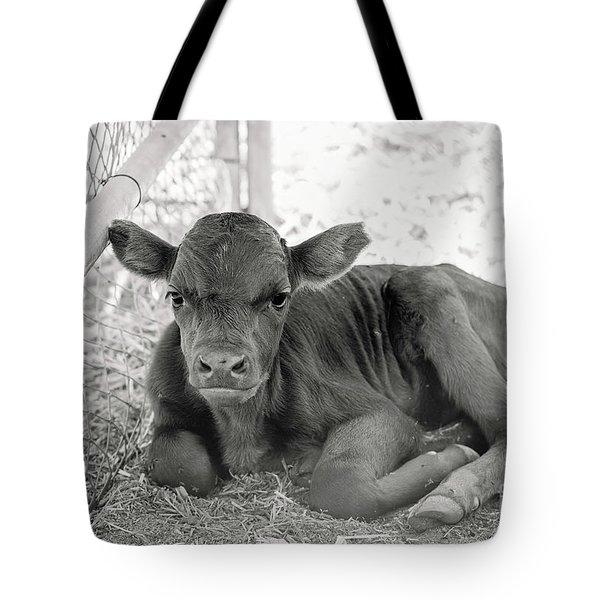 Grumpy Cow Tote Bag