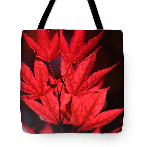 Guardsman Red Japanese Maple Leaves Tote Bag