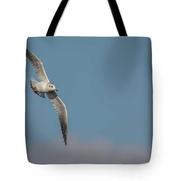 Tote Bag featuring the photograph Gull In Flight by Scott Lyons