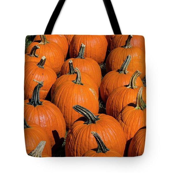 Halloween Harvest Tote Bag