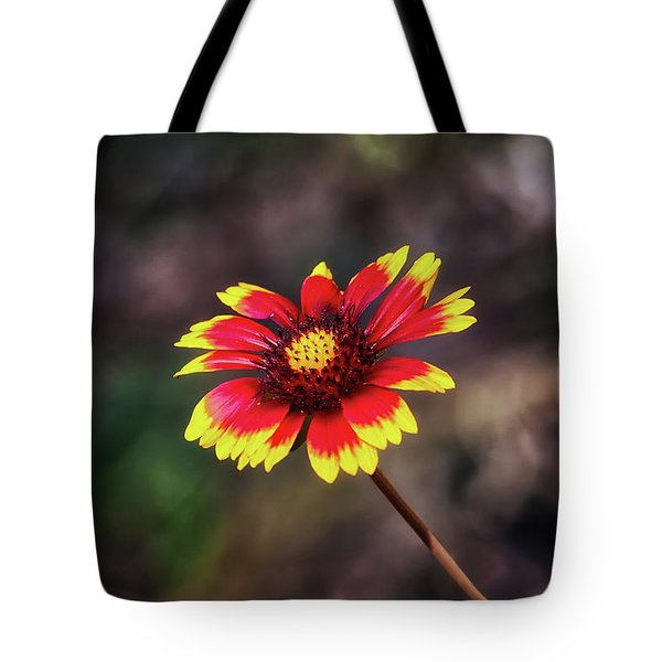 Tote Bag featuring the photograph Hand Painted by Rick Furmanek