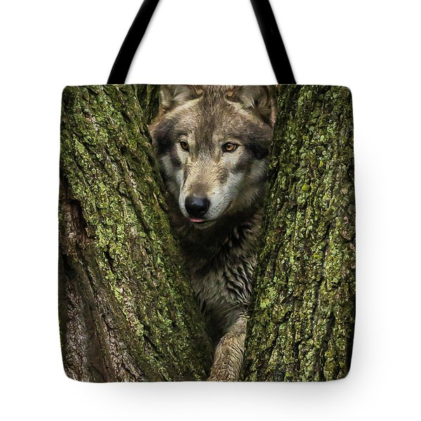 Hangin In The Tree Tote Bag