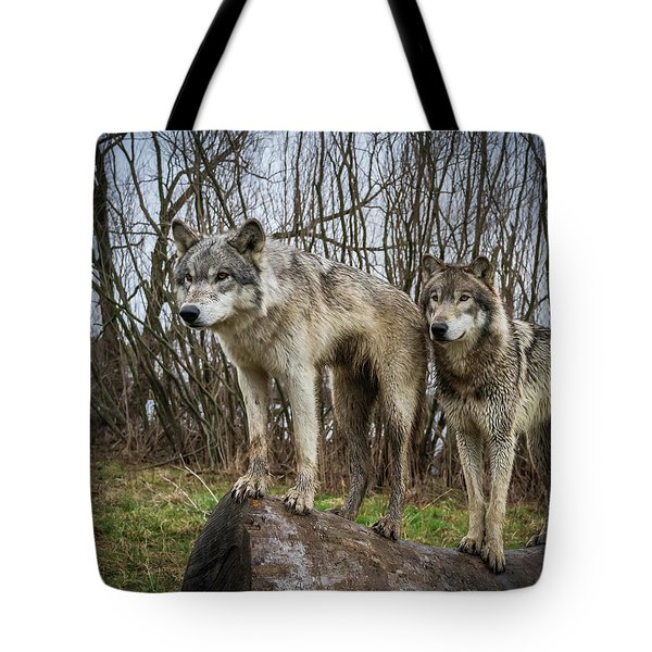 Hangin On The Log Tote Bag