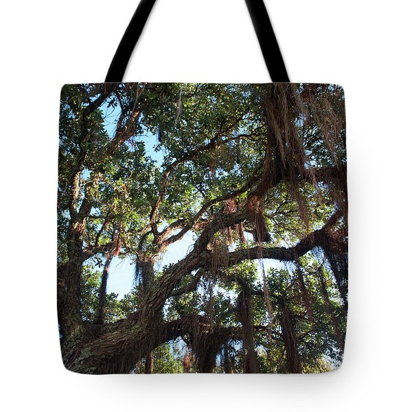 Tote Bag featuring the photograph Hanging Vine Tree by Mark Dodd