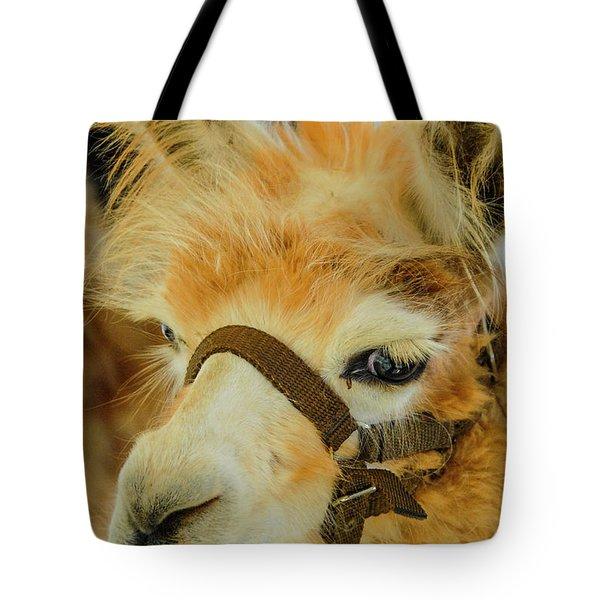 Happy Alpaca Tote Bag
