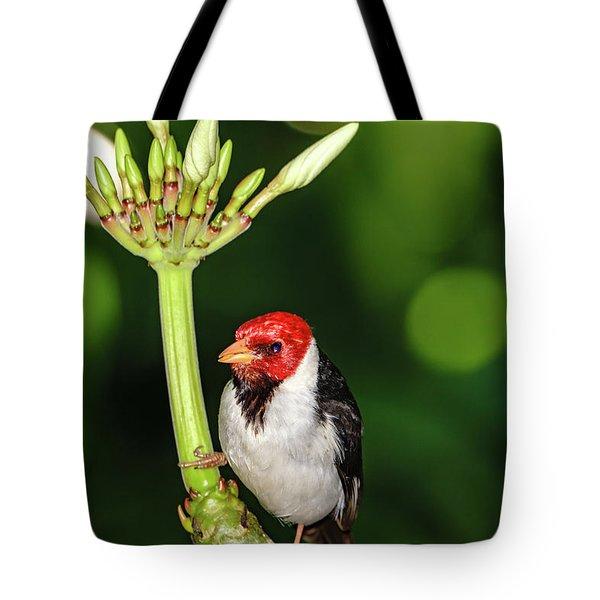 Happy Valentine's Day Bird Tote Bag