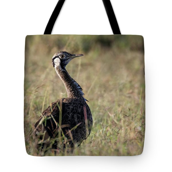 Tote Bag featuring the photograph Black-bellied Bustard by Thomas Kallmeyer