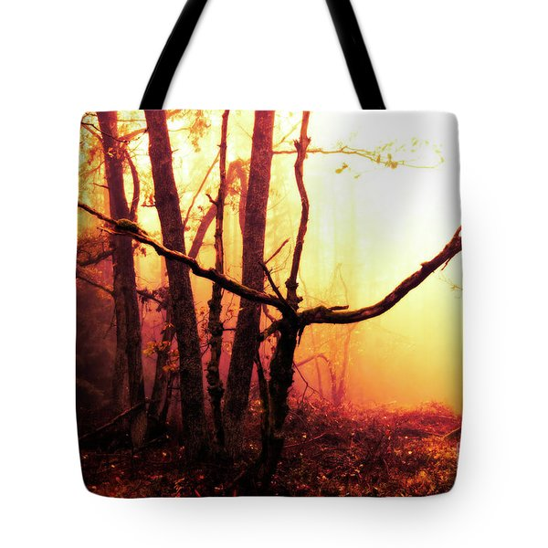 Haunted Forest In A Mystical Light Tote Bag