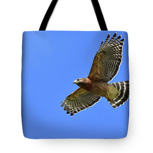 Hawk On The Go Tote Bag