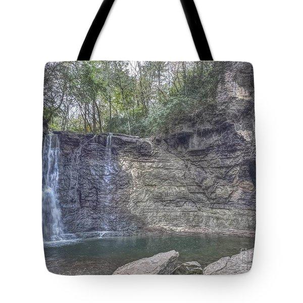 Hayden Falls Tote Bag