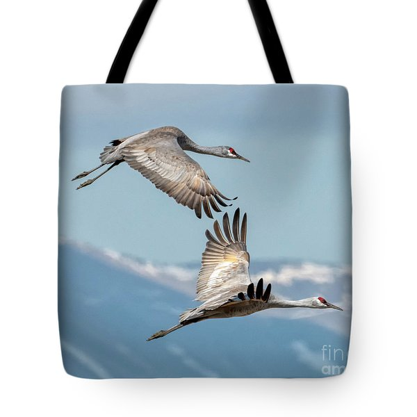 Headed North Tote Bag