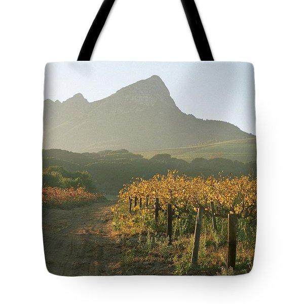 Helderburg Vineyard Tote Bag