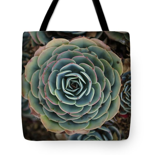 Hen And Chicks Succulent Tote Bag