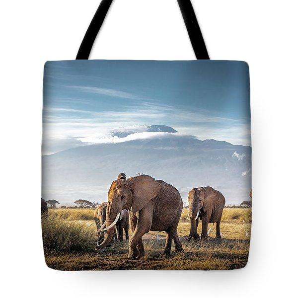 Herd Of African Elephants In Front Of Kilimanjaro Tote Bag