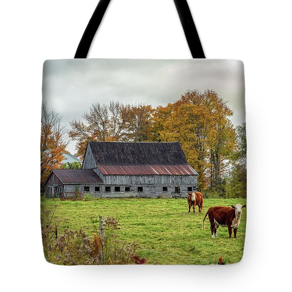Herefords In Fall Tote Bag