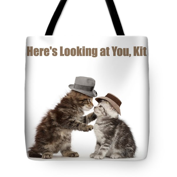 Tote Bag featuring the photograph Here's Looking At You, Kit by Warren Photographic