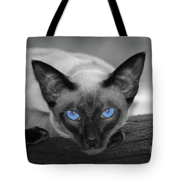Hey There Blue Eyes - Siamese Cat Tote Bag