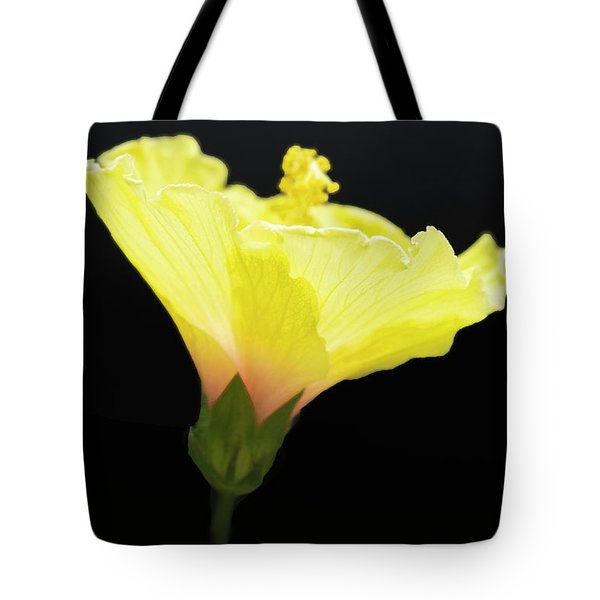 Hibiscus In Black Tote Bag