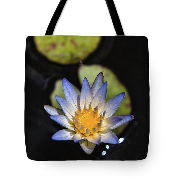 Hidden Jewel Tote Bag