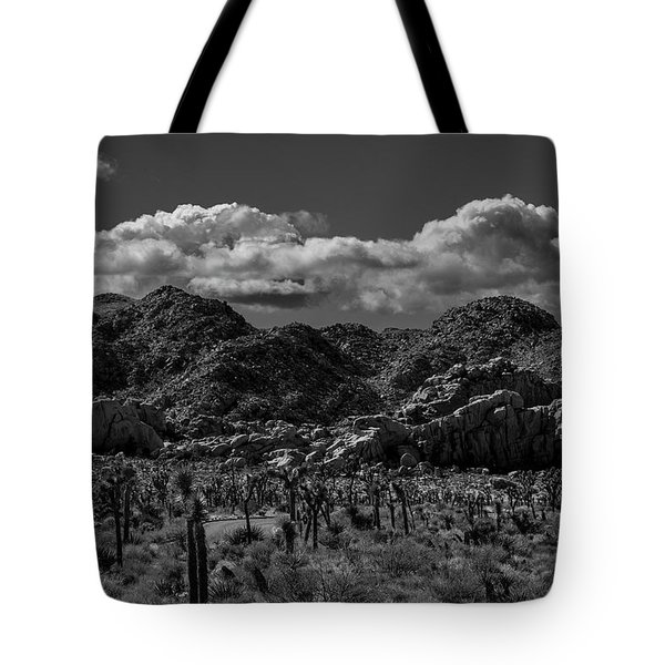Tote Bag featuring the photograph Hidden Valley by Matthew Irvin