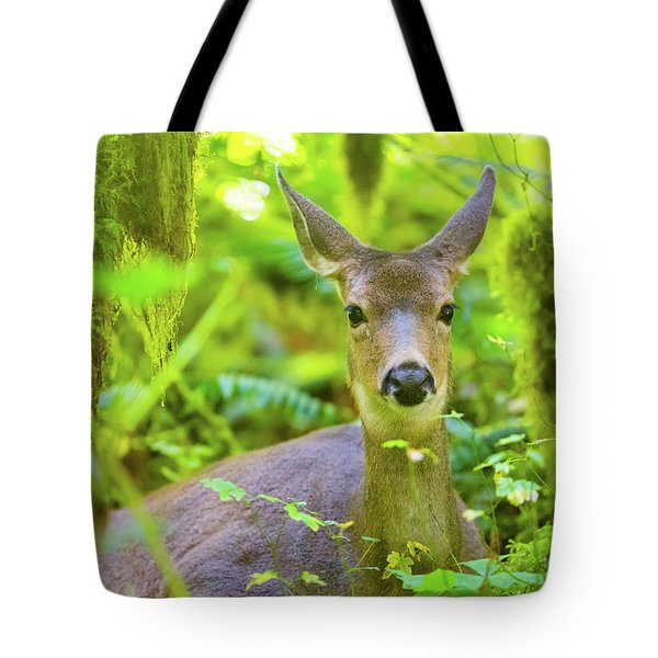 Hiding Deer Tote Bag