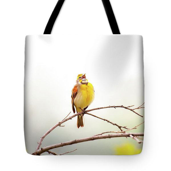 Tote Bag featuring the photograph High Key Dickcissel by Jeff Phillippi