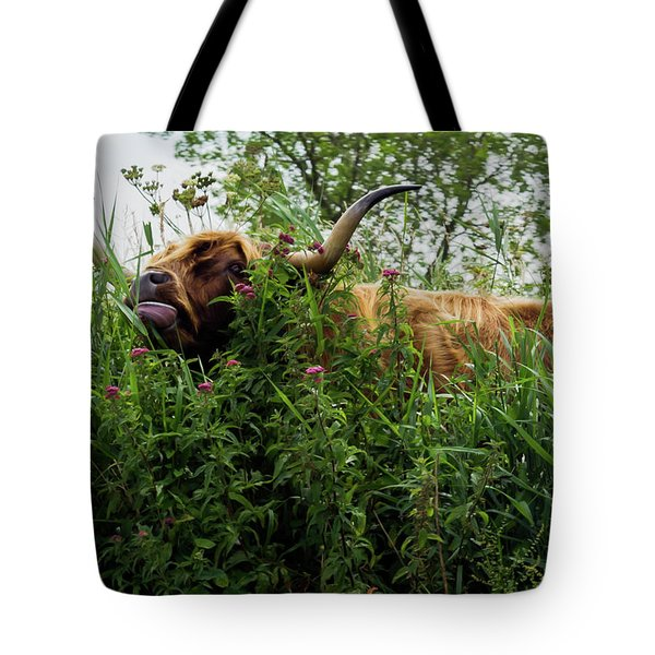Tote Bag featuring the photograph Highland Cow In Tall Grass by Scott Lyons
