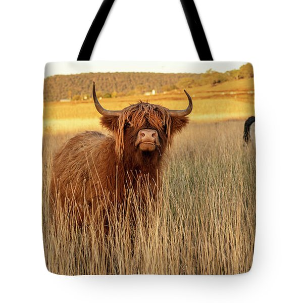 Highland Cows On The Farm Tote Bag