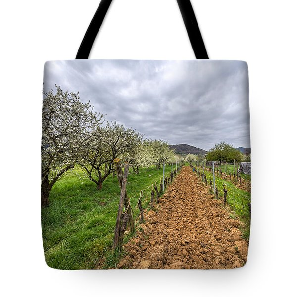 Tote Bag featuring the photograph Historical Gems In The Alsace by Bernd Laeschke