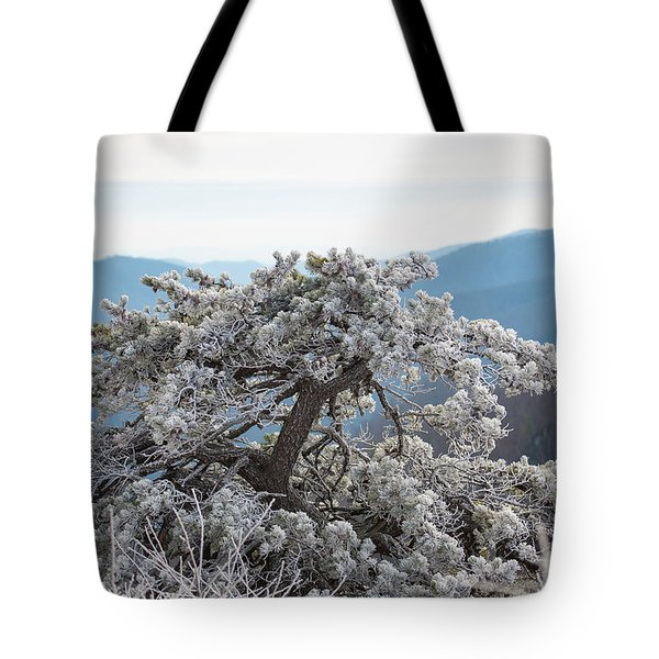 Hoarfrost In The Blue Ridge Mountains Tote Bag