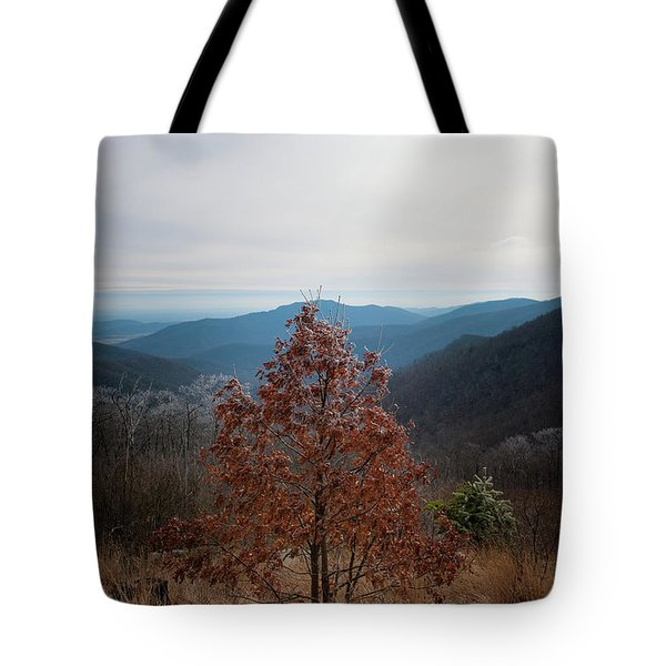 Hoarfrost On Fall Leaves Tote Bag