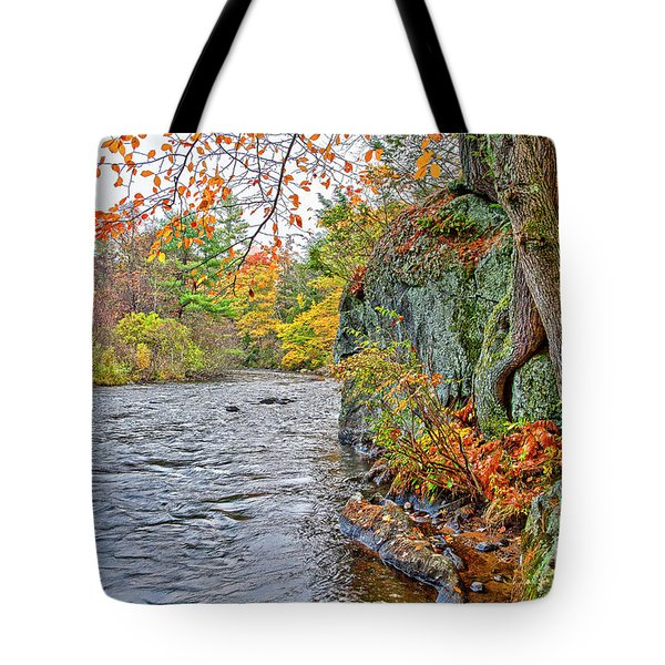 Hogback Dam Pool Tote Bag