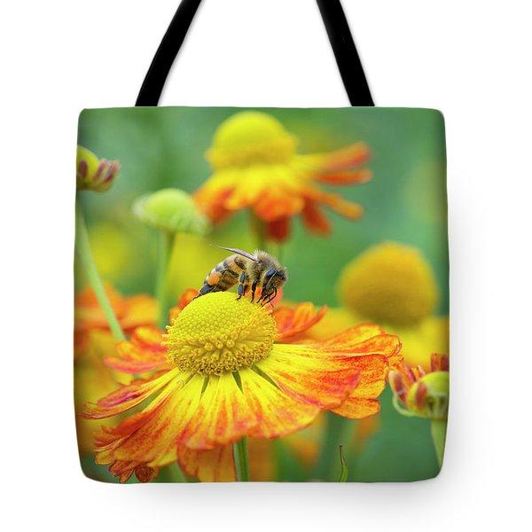 Honey Bee And Helenium Tote Bag