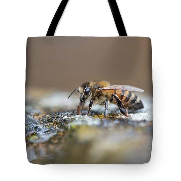 Honey Bee Drinking Water Tote Bag