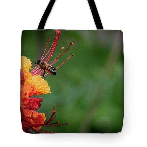 Honey Bee Extraction Tote Bag