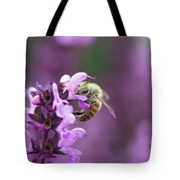 Honey Bee On Salvia Flowers Tote Bag