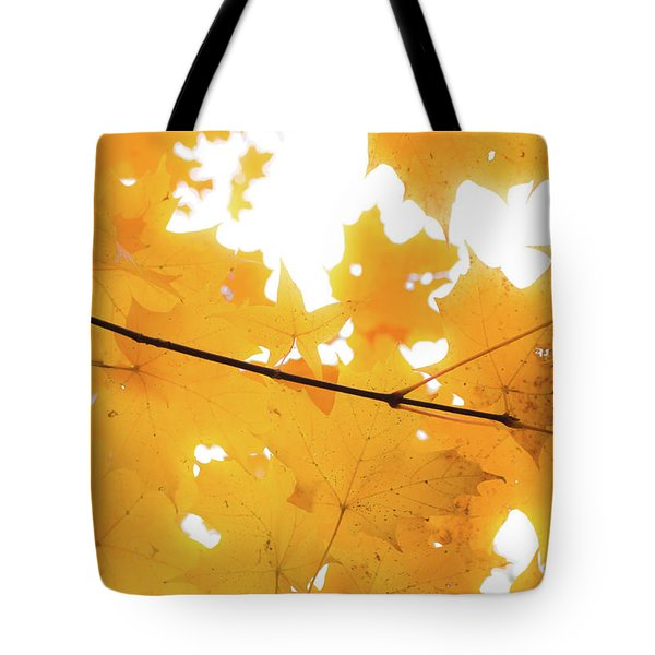 Honey Colored Happiness Tote Bag