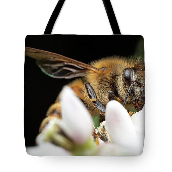 Honeybee Peeking Tote Bag