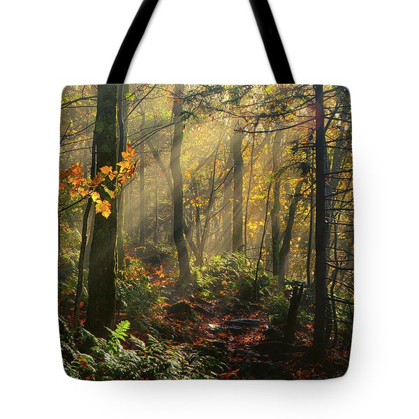 Horizontal Rays Of Sun After A Storm Tote Bag